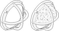 dfm-12-s